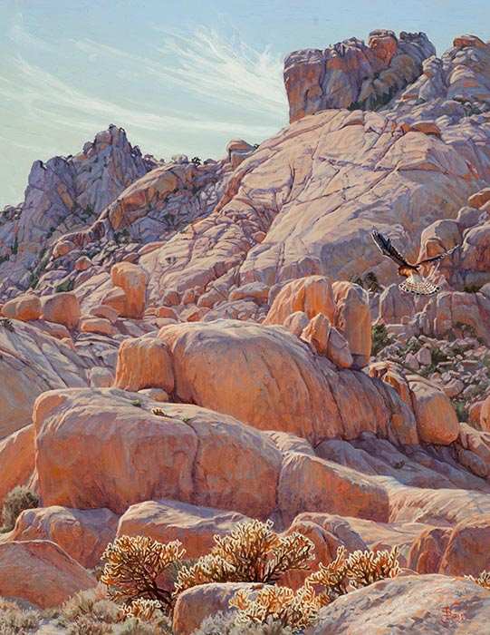 Kestrel's Kingdom, Mojave National Preserve , California